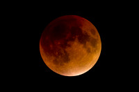 Total Eclipse of the Super Blood Moon 9.27.15