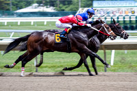 6.4.16 Monmouth Park Race Track